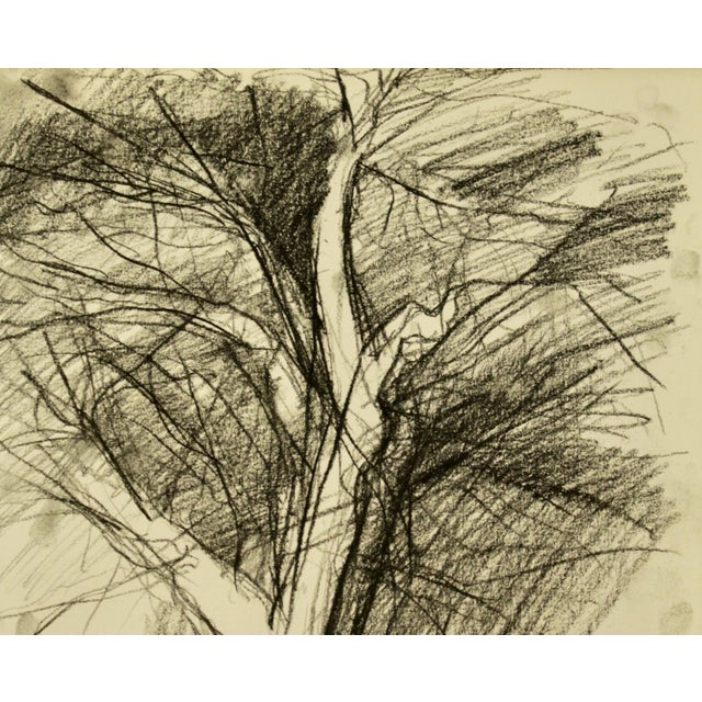 """""""Tree in Winter"""" Drawing - Image 3 of 3"""