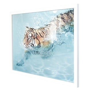 "Wendover ""Cooling Off"" Tiger Art For Sale"