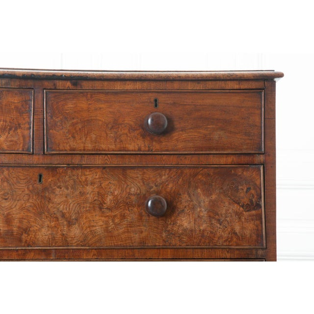 English Early 19th Century Burl Oak Chest of Drawers For Sale - Image 4 of 10