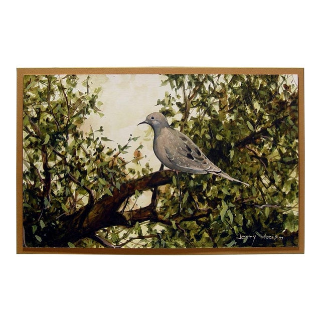 Mourning Dove Painting by Jerry Weers For Sale