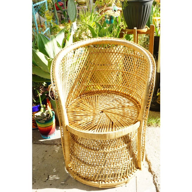 Vtg Mid-Century Mehitabel Furniture Co. Natural Woven Rattan Peacock Barrel Chair | Mid-Century Boho Furniture For Sale - Image 11 of 12