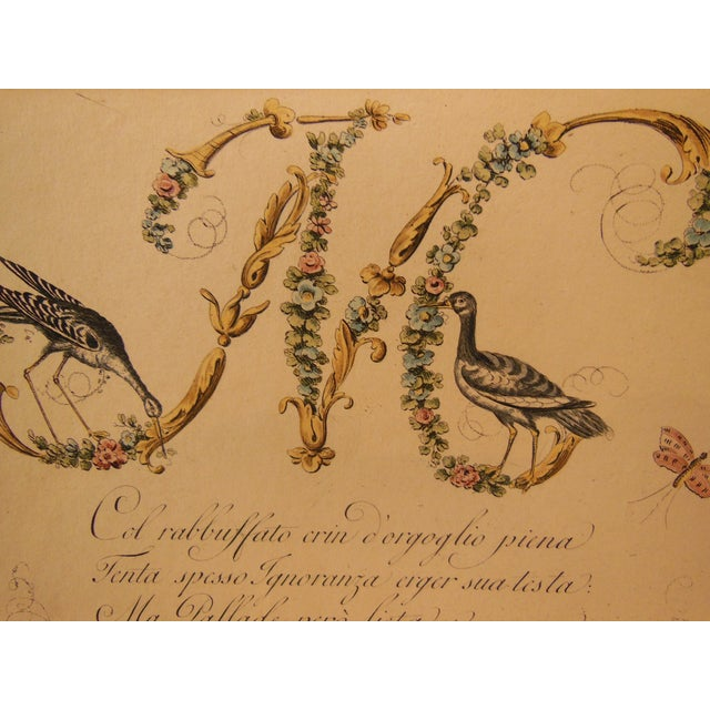 """1790s Illustrated Letter """"M"""" Calligraphy - Image 4 of 7"""