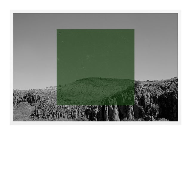 Green on BW2 by Riley Ryan-Wood Contemporary Photograph in White Frame, Small For Sale