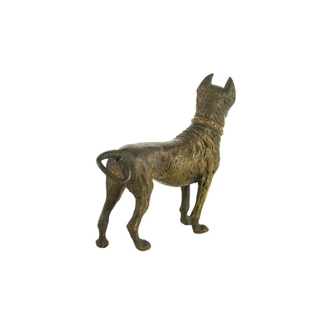 Original Bronze Pit Bull Sculpture For Sale In Los Angeles - Image 6 of 9