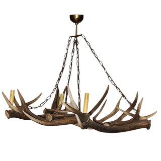 Deer Horn Chandelier For Sale