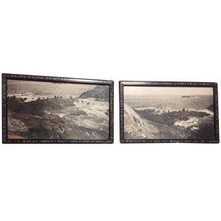 1920s Photographs Framed Black White Marine Life Canada - Pair For Sale