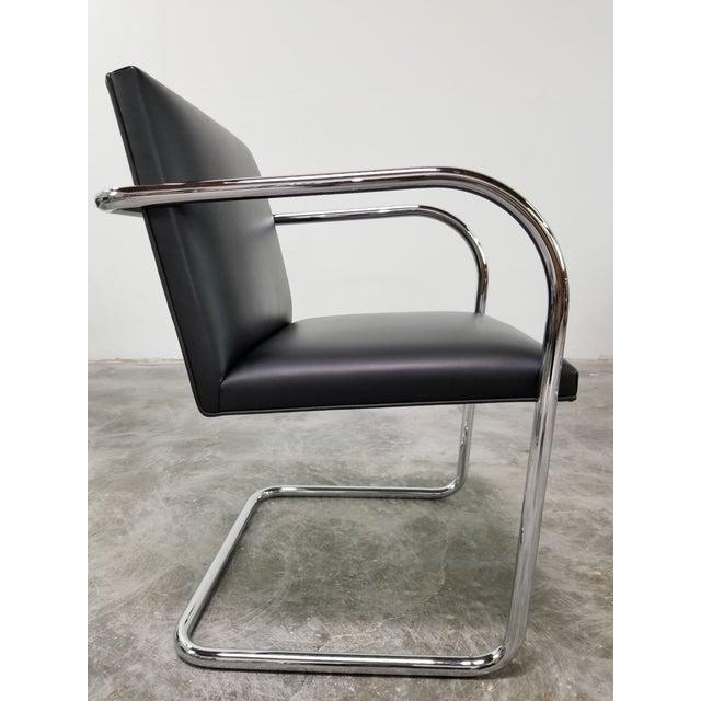 Black Original Knoll Brno Tubular Armchairs - Set of 6 For Sale - Image 8 of 13