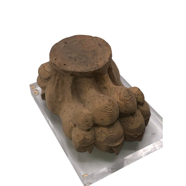 Italian Antique Mounted Paw Fragment For Sale - Image 3 of 8