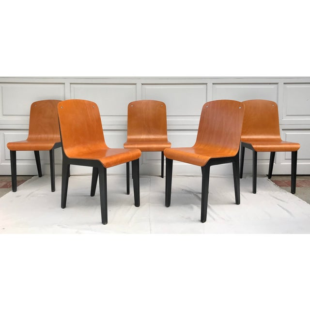 Vintage Rounded Bent Plywood Chairs - Set of 5 For Sale - Image 9 of 9