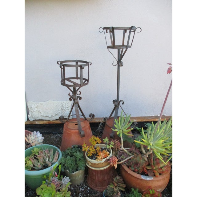 French Mediterranean Iron Planters - A Pair - Image 4 of 9