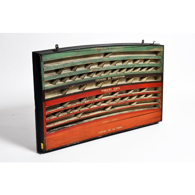 Mid 20th C. French Geology Wall Display For Sale - Image 12 of 13