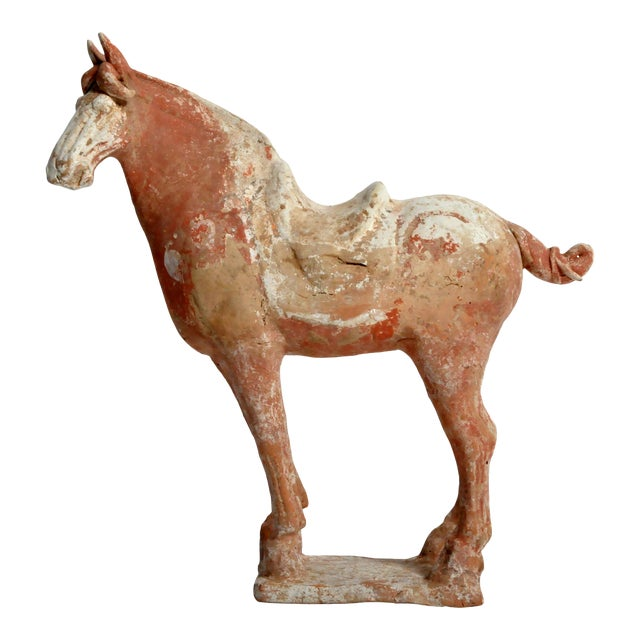 Tang Dynasty Horse For Sale