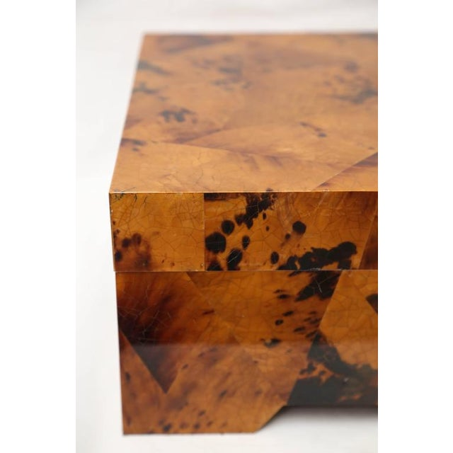 Oggetti Eugenio Tavola by Oggetti Horn & Shell Box Over Wood For Sale - Image 4 of 9