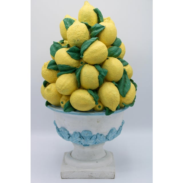 A lovely, large lemon topiary with French acanthus leaves adorning the basket portion. This is the perfect lemon tree for...