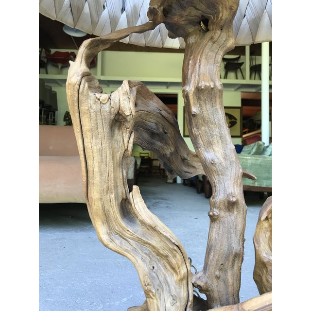 """50"""" Tall Monumental Driftwood Lamp Original Woven Shade For Sale In New York - Image 6 of 10"""