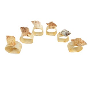 Natural Shell Napkin Rings, S/6 For Sale