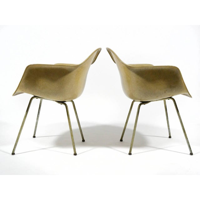 Pair of Eames SAX Armchairs by Zenith Plastics for Herman Miller - Image 6 of 11