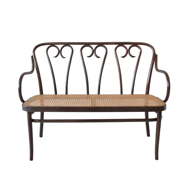Strange Vintage Bentwood Cane Bench Gmtry Best Dining Table And Chair Ideas Images Gmtryco