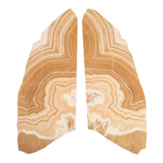 Phillips Collection Butterfly Lamp, Onyx For Sale