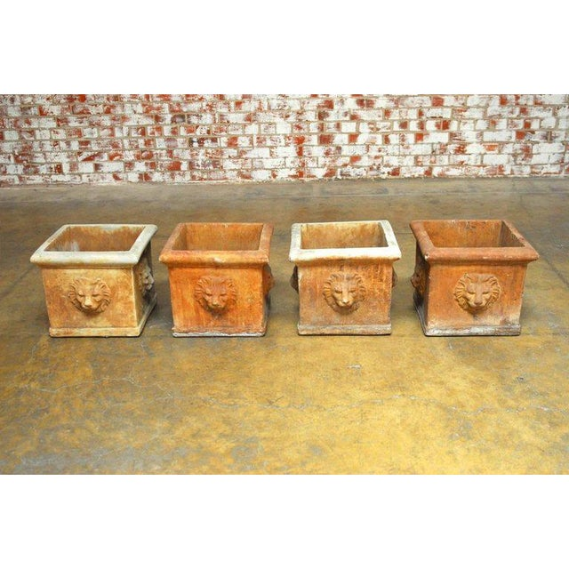 Continental Style Sandstone Planters with Lions Head Motif - Image 2 of 10