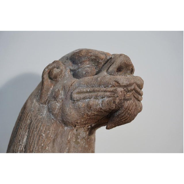 Asian Late 18th Century Foo Dog For Sale - Image 3 of 11
