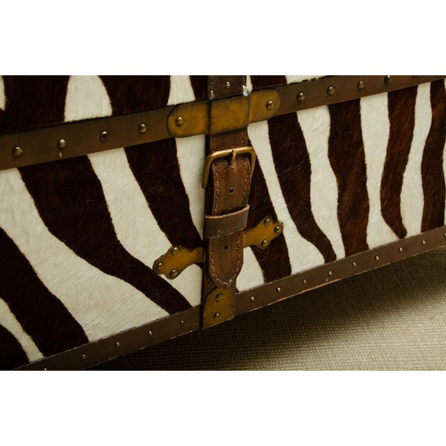 French Trunk/Cocktail Table Covered in Zebra For Sale - Image 4 of 11