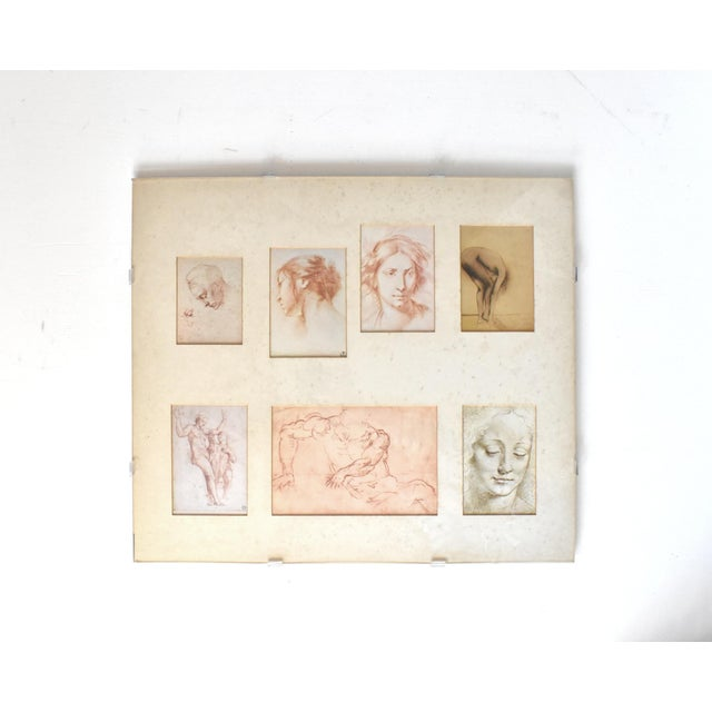 A collection of 7 prints of figural and portrait sketches by Michelangelo, Furini, Raphael, the school of Da Vinci, and a...