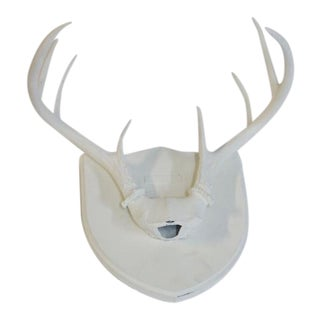 Painted Deer Antlers on Plaque For Sale