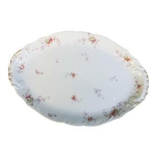 Late 19th Century Haviland Limoges Victorian Large Platter For Sale