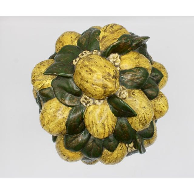 Vintage Italian Floral Lemon Tree / Topiary For Sale - Image 9 of 13