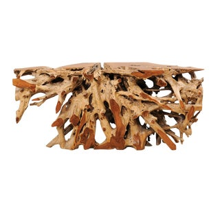 Exceptional Tropical Hardwood Teak Root Console Table For Sale