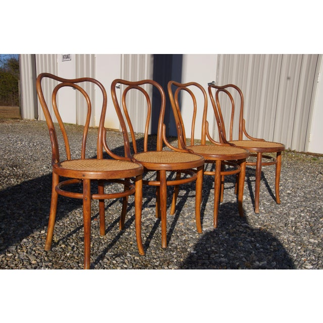 I wish I knew who made these incredible bentwood chairs because they came out of a beautiful estate with a lot of high-end...