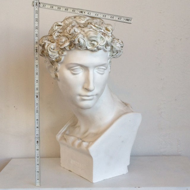 Plaster Bust Of David - Image 2 of 8