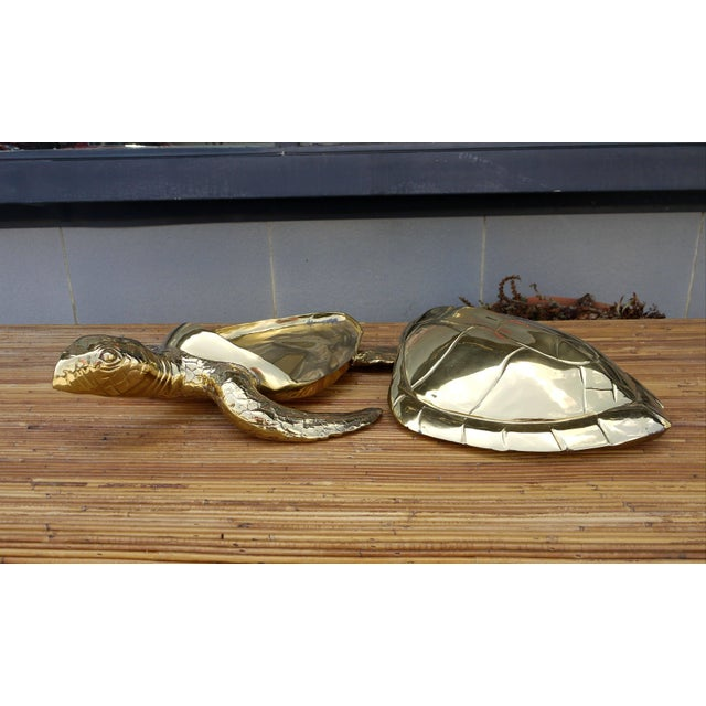 1970s Stunning Large Scale Brass Sea Turtle Box For Sale - Image 5 of 6