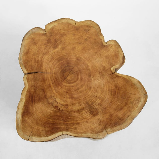 Contemporary Organic Teak Stump Stool For Sale - Image 3 of 4