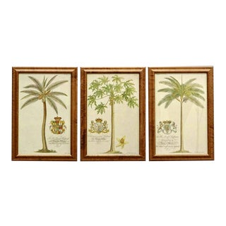 Continental European Palm Prints - Set of 3 For Sale
