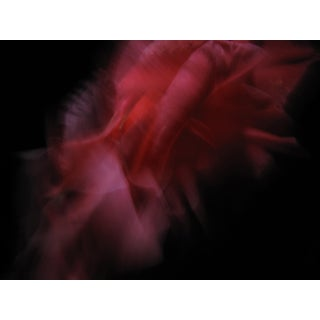 Contemporary Abstract Fine Art Flower Print For Sale