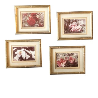 Gallery Wall Collection-4 Vintage Small Flower Photos in Faux Bamboo Frames - Set of 4 For Sale