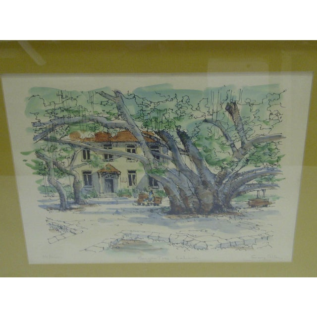 Limited Edition Signed Framed Print Bauyan Tree George Allan - Image 3 of 7