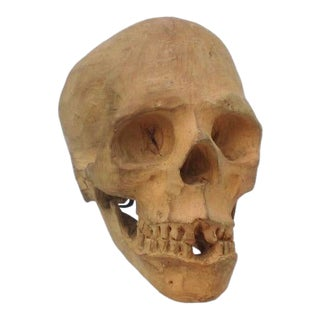 Terra Cotta Skull Sculpture on Museum Steel Mount For Sale