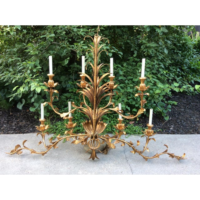 French Country Hollywood Regency Gilt Lighted 8-Arm Wall Sconce For Sale - Image 3 of 9