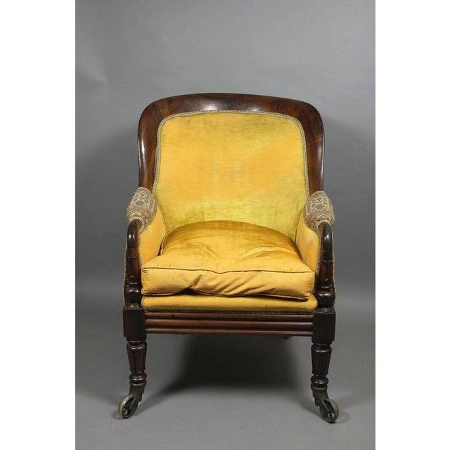 Grand William IV Rosewood Bergere Chair For Sale - Image 5 of 8