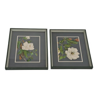 1940's Botanical Prints - a Pair For Sale
