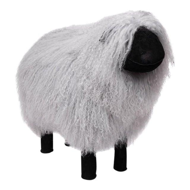 Tibetan Lamb Sheep in Grey Large For Sale