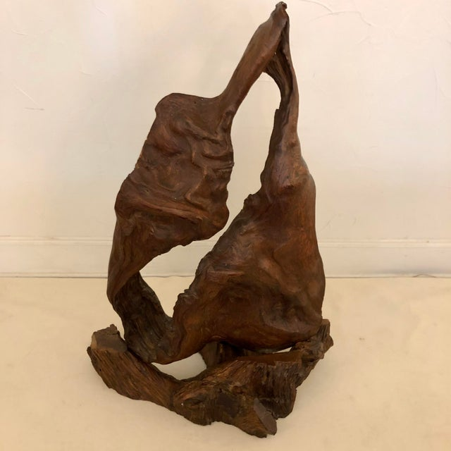 Redwood Naturally Formed Sculpture For Sale - Image 11 of 11