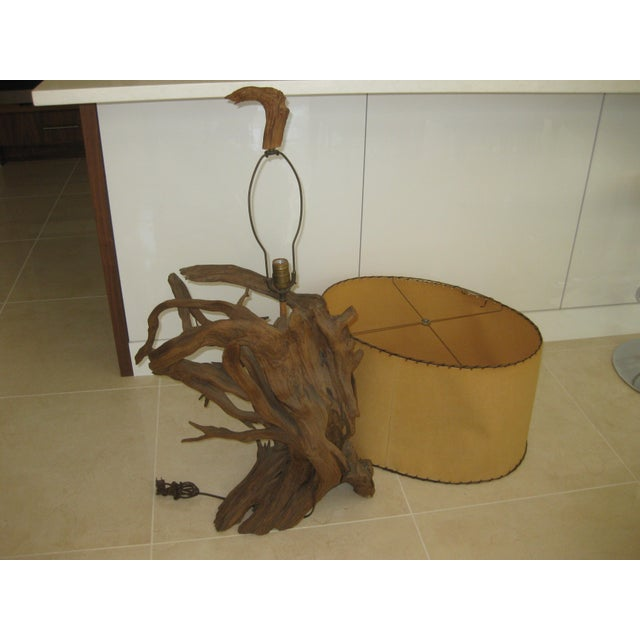 Driftwood Mid-Century Modern Driftwood Table Lamp For Sale - Image 7 of 12