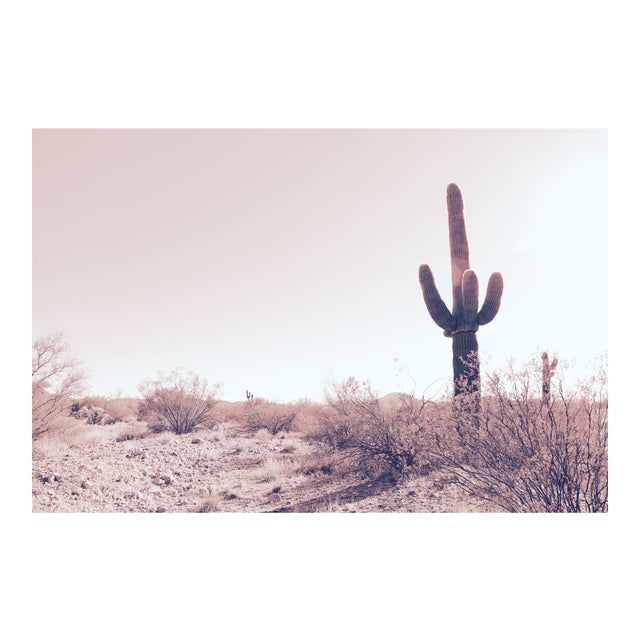 Desert Dreams Limited Edition Print - Image 1 of 5