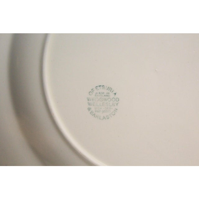 English Traditional Vintage Wedgwood Dinner Plates - Set of 8 For Sale - Image 3 of 6