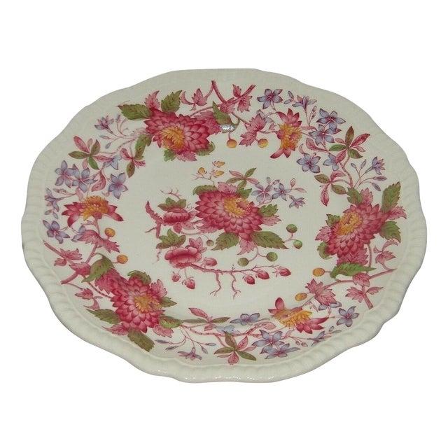 Vintage Spode Aster Red Dinner Plate Copeland For Sale