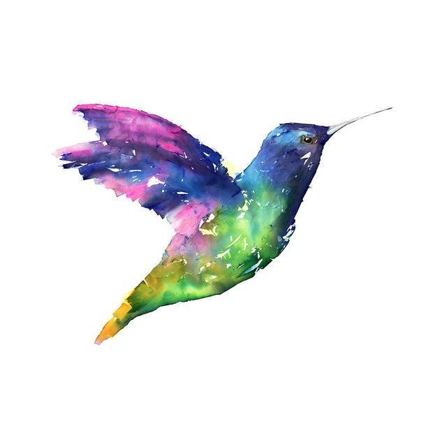 Natasha Mistry Hummingbird Fine Art Print For Sale